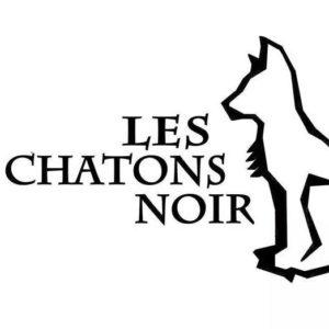 LesChatonsNoir